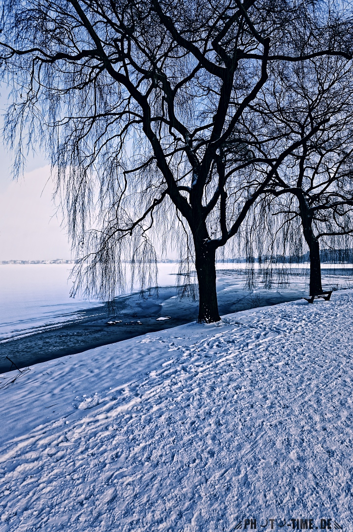 icy_alster